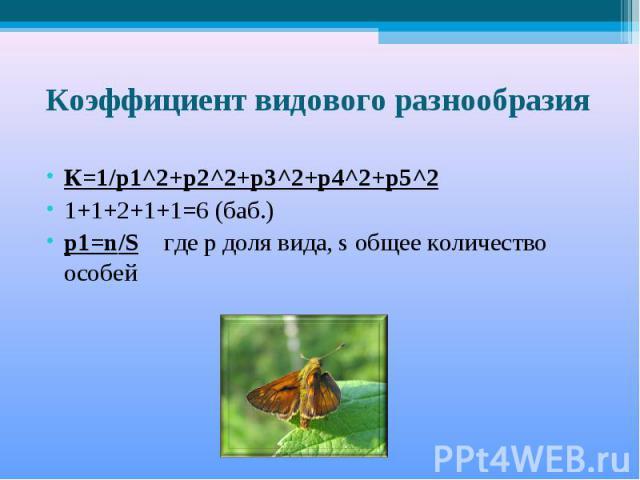 Коэффициент видового разнообразия К=1/р1^2+р2^2+р3^2+р4^2+р5^21+1+2+1+1=6 (баб.)p1=n/S где р доля вида, s общее количество особей