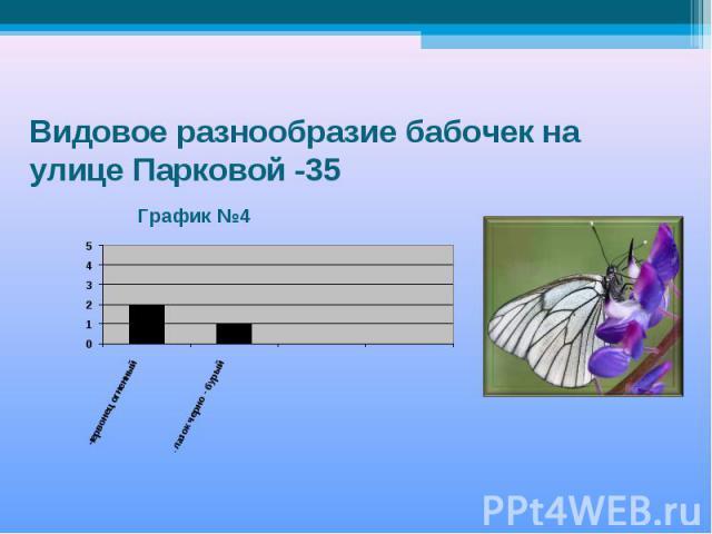 Видовое разнообразие бабочек на улице Парковой -35 График №4