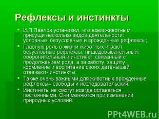 Рефлексы и инстинкты И.П.Павлов установил, что всем животным присущи несколько в