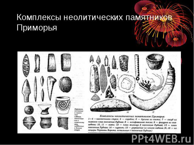 Комплексы неолитических памятников Приморья