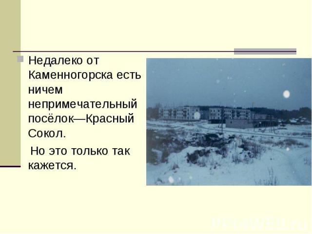 Недалеко от Каменногорска есть ничем непримечательный посёлок—Красный Сокол. Но это только так кажется.