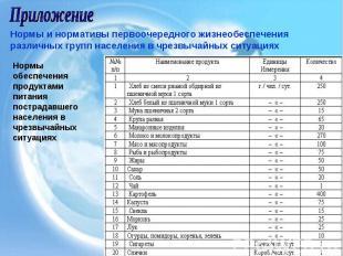 Приложение Нормы и нормативы первоочередного жизнеобеспечения различных групп на
