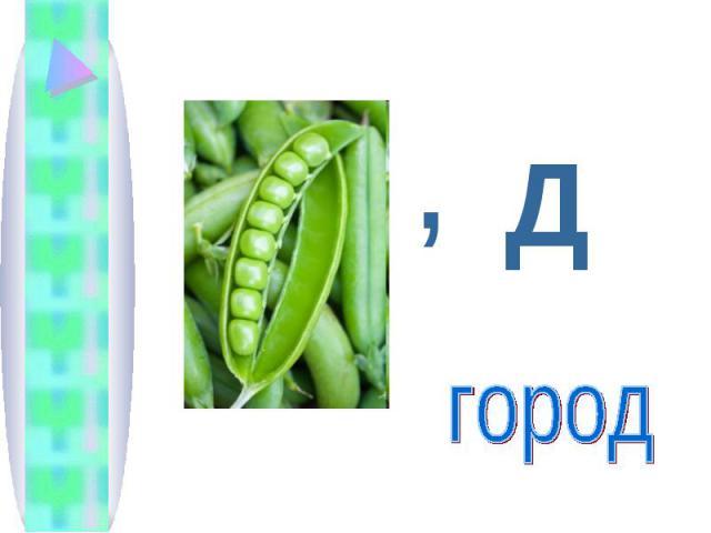 Дгород