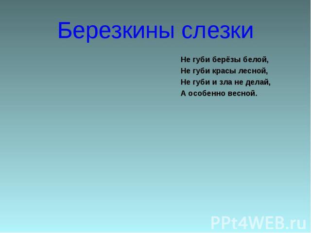 Березкины слезки Не губи берёзы белой,Не губи красы лесной,Не губи и зла не делай,А особенно весной.