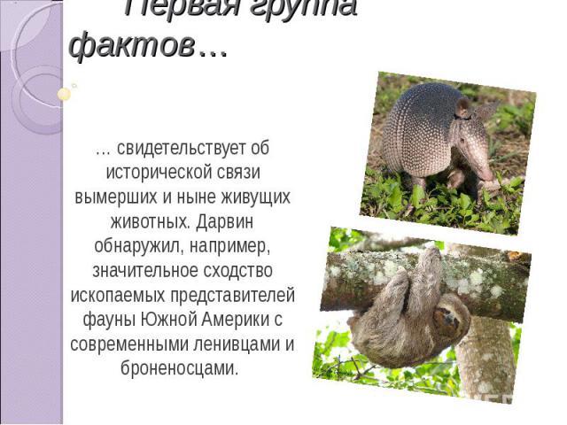 Первая группа фактов… … свидетельствует об исторической связи вымерших и ныне живущих животных. Дарвин обнаружил, например, значительное сходство ископаемых представителей фауны Южной Америки с современными ленивцами и броненосцами.