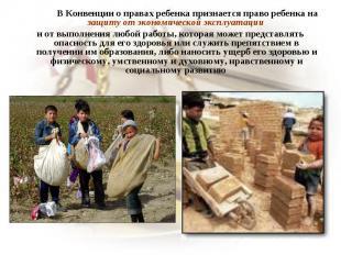 В Конвенции о правах ребенка признается право ребенка на защиту от экономической
