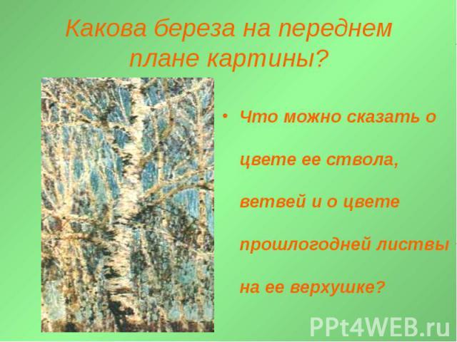 Какова береза на переднем плане картины? Что можно сказать о цвете ее ствола, ветвей и о цвете прошлогодней листвы на ее верхушке?