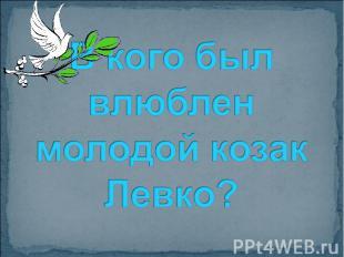 В кого был влюблен молодой козак Левко?