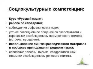 Социокультурные компетенции: Курс «Русский язык»:  работа со словарями;  с