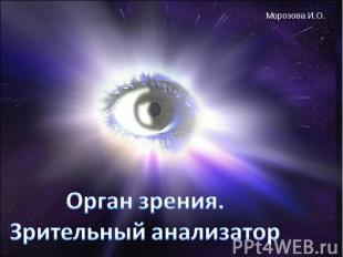 Орган зрения.Зрительный анализатор
