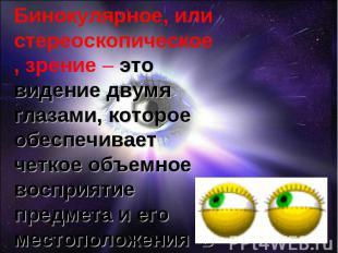 Бинокулярное, или стереоскопическое, зрение – это видение двумя глазами, которое