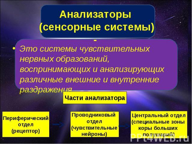 Анализаторы (сенсорные системы) - Это системы чувствительных нервных образований, воспринимающих и анализирующих различные внешние и внутренние раздражения