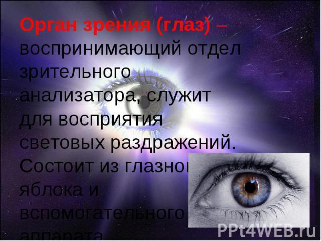 Орган зрения (глаз) –воспринимающий отдел зрительного анализатора, служит для восприятия световых раздражений. Состоит из глазного яблока и вспомогательного аппарата.