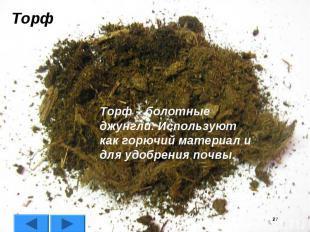 ТорфТорф – болотные джунгли. Используют как горючий материал и для удобрения поч