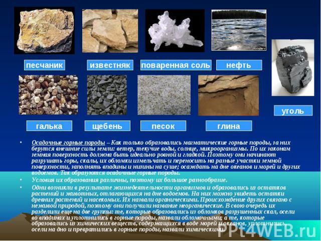 Осадочные горные породы – Как только образовались магматические горные породы, за них берутся внешние силы земли: ветер, текучие воды, солнце, микроорганизмы. По их законам земная поверхность должна быть идеально ровной и гладкой. Поэтому они начина…