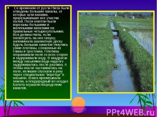 Со временем от русла Нила были отведены большие каналы, от которых шли канавки,