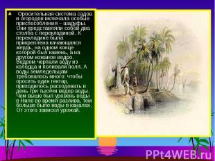 Оросительная система садов и огородов включала особые приспособления – шадуфы. О