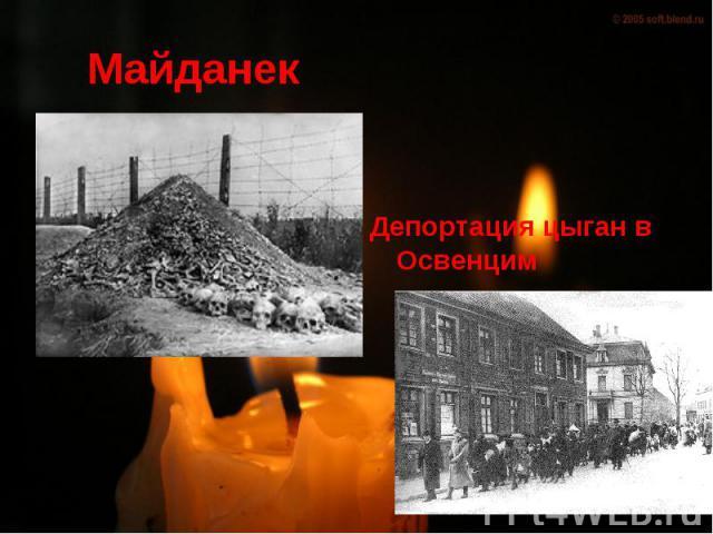 Майданек Депортация цыган в Освенцим