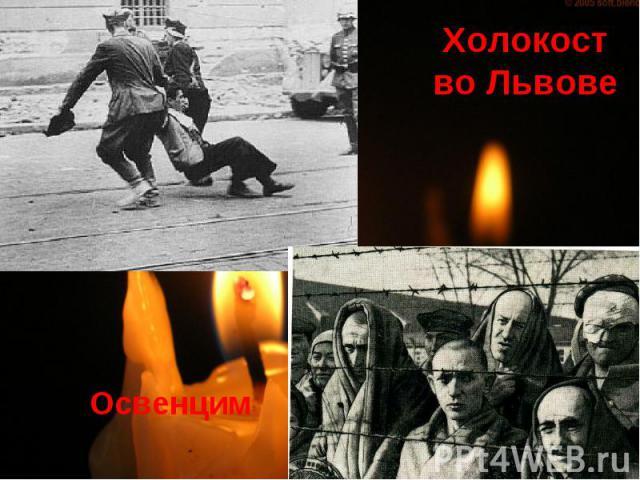 Освенцим Холокост во Львове