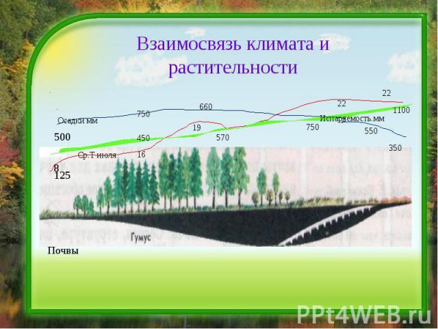 Взаимосвязь климата и растительности