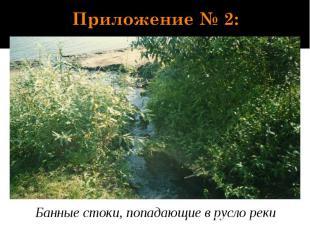 Приложение № 2: Банные стоки, попадающие в русло реки