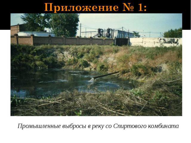 Приложение № 1: Промышленные выбросы в реку со Спиртового комбината
