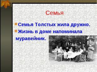 Семья Семья Толстых жила дружно.Жизнь в доме напоминала муравейник.