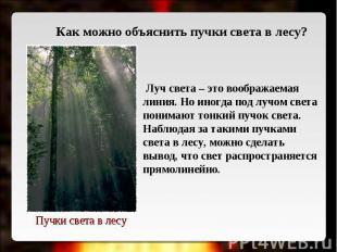 Как можно объяснить пучки света в лесу? Луч света – это воображаемая линия. Но и