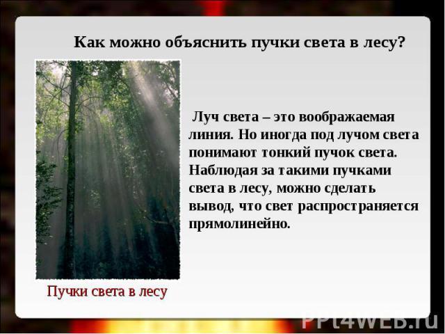 Как можно объяснить пучки света в лесу? Луч света – это воображаемая линия. Но иногда под лучом света понимают тонкий пучок света. Наблюдая за такими пучками света в лесу, можно сделать вывод, что свет распространяется прямолинейно.Пучки света в лесу