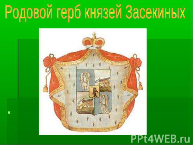 Родовой герб князей Засекиных