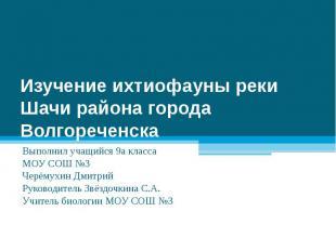 Изучение ихтиофауны реки Шачи района города Волгореченска Выполнил учащийся 9а к