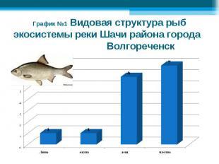 График №1 Видовая структура рыб экосистемы реки Шачи района города Волгореченск