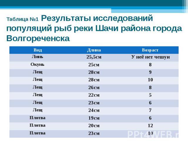 Таблица №1 Результаты исследований популяций рыб реки Шачи района города Волгореченска