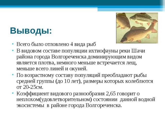 Выводы: Всего было отловлено 4 вида рыбВ видовом составе популяции ихтиофауны реки Шачи района города Волгореченска доминирующим видом является плотва, немного меньше встречается лещ, меньше всего линей и окуней.По возрастному составу популяций прео…