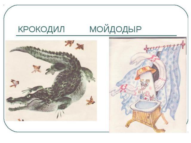 КРОКОДИЛ МОЙДОДЫР