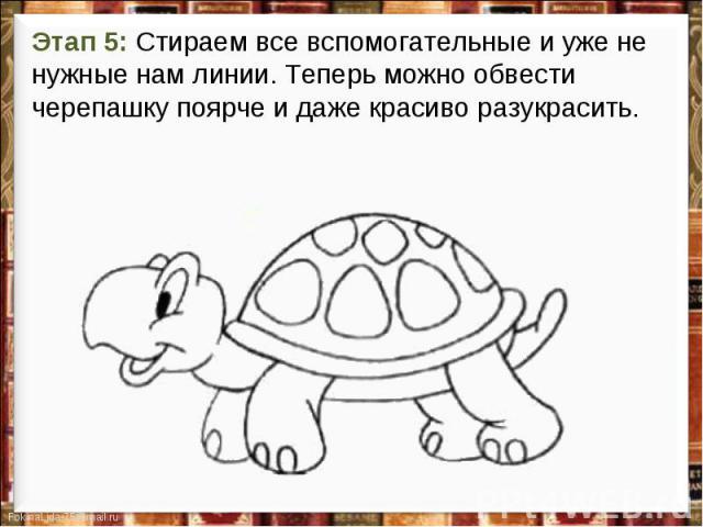 Этап 5: Стираем все вспомогательные и уже не нужные нам линии. Теперь можно обвести черепашку поярче и даже красиво разукрасить.