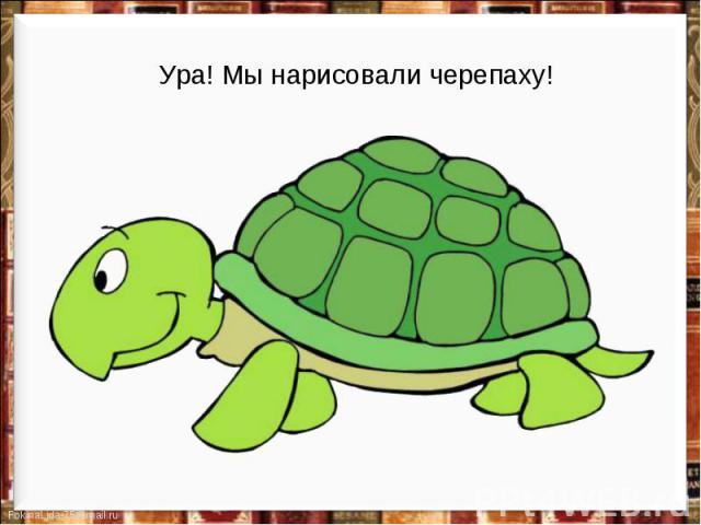 Ура! Мы нарисовали черепаху!