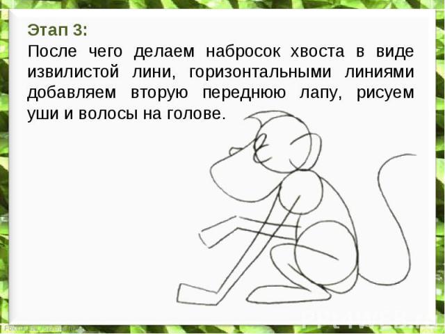 Этап 3: После чего делаем набросок хвоста в виде извилистой лини, горизонтальными линиями добавляем вторую переднюю лапу, рисуем уши и волосы на голове.