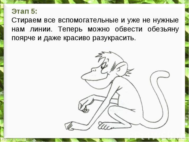 Этап 5: Стираем все вспомогательные и уже не нужные нам линии. Теперь можно обвести обезьяну поярче и даже красиво разукрасить.
