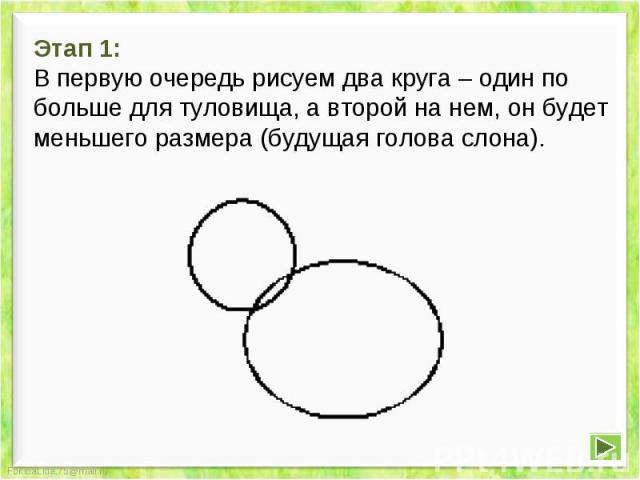 Этап 1:В первую очередь рисуем два круга – один по больше для туловища, а второй на нем, он будет меньшего размера (будущая голова слона).