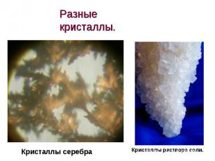 Разные кристаллы. Кристаллы серебраКристаллы раствора соли.