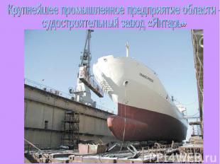 Крупнейшее промышленное предприятие области - судостроительный завод «Янтарь»