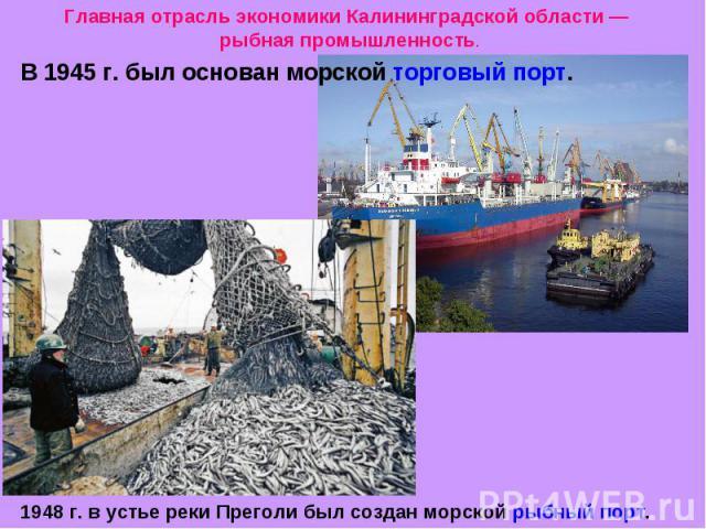 Главная отрасль экономики Калининградской области — рыбная промышленность. В 1945 г. был основан морской торговый порт. 1948 г. в устье реки Преголи был создан морской рыбный порт.