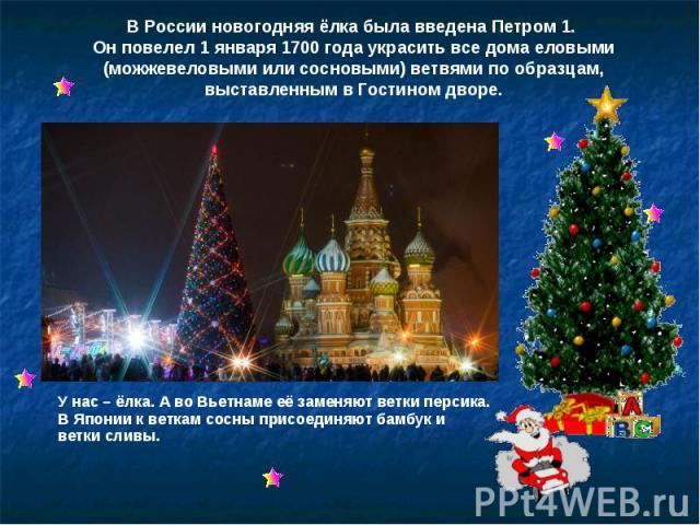 В России новогодняя ёлка была введена Петром 1. Он повелел 1 января 1700 года украсить все дома еловыми (можжевеловыми или сосновыми) ветвями по образцам, выставленным в Гостином дворе. У нас – ёлка. А во Вьетнаме её заменяют ветки персика. В Японии…