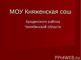 МОУ Княженская сош Брединского районаЧелябинской области