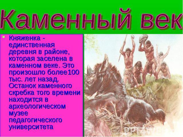 Каменный век Княженка - единственная деревня в районе, которая заселена в каменном веке. Это произошло более100 тыс. лет назад. Останок каменного скребка того времени находится в археологическом музее педагогического университета
