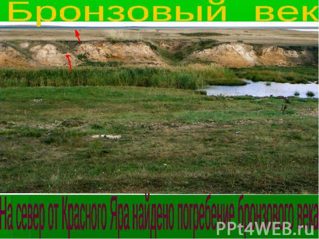 Бронзовый век На север от Красного Яра найдено погребение бронзового века