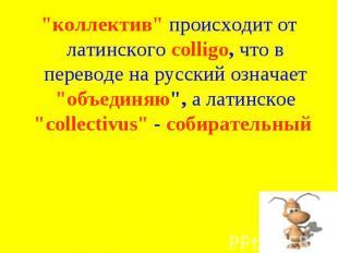 """""""коллектив"""" происходит от латинского colligo, что в переводе на русский означает"""