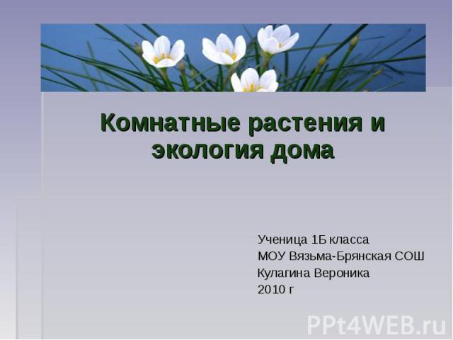 Комнатные растения и экология дома Ученица 1Б класса МОУ Вязьма-Брянская СОШ Кулагина Вероника 2010 г