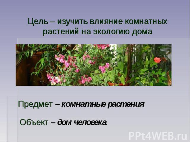 Цель – изучить влияние комнатных растений на экологию дома Предмет – комнатные растения Объект – дом человека